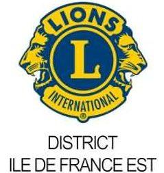 Lions-fanion